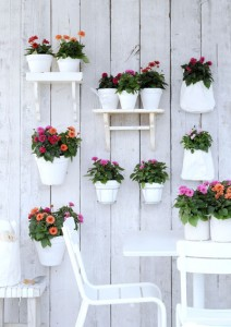 ruimtegebrek schutting planten witte plantenpotten