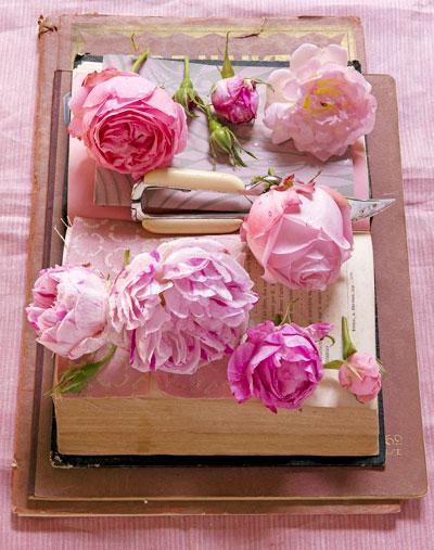 roze-rozen-pioenrozen
