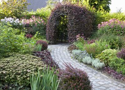 rode-beplanting-tuin