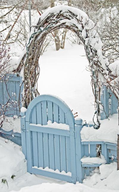 blauw-hek,boog-sneeuw
