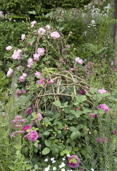 Zelf maken: rozenbollen