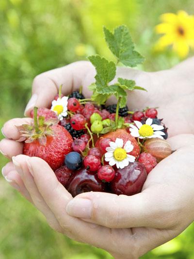 Nu plukken: zacht fruit