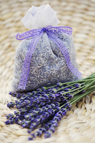 Lavendel drogen voor zakjes in de linnenkast