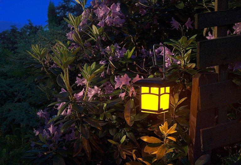 Verlichtingstips voor een stralende tuin