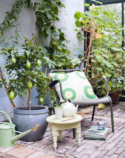 tuinhuis wordt oranjerie