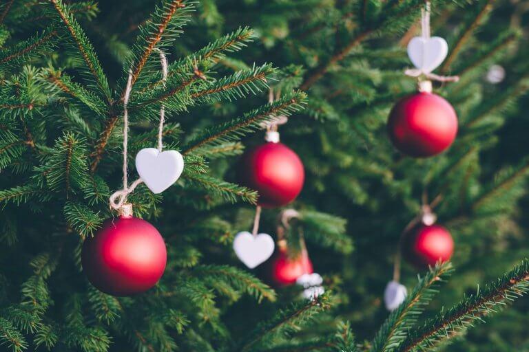 8 tips om te doen met de kerstboom na de kerst
