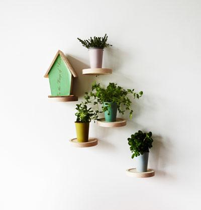 Nieuwe hangplek voor kamerplanten