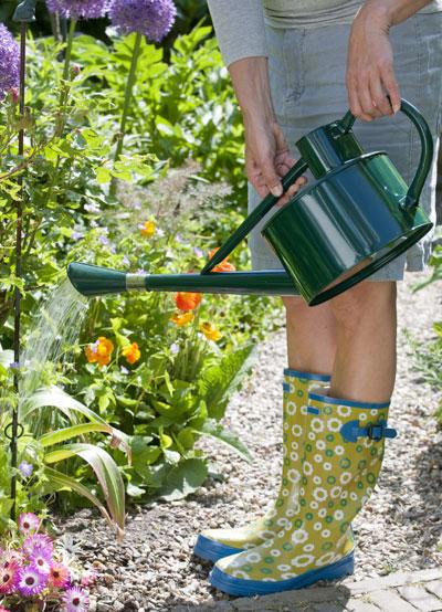 Tips om de tuin te vertroetelen