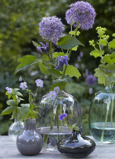 Allium op vaas