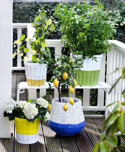 vakantiegevoel in eigen tuin, dip-it potten