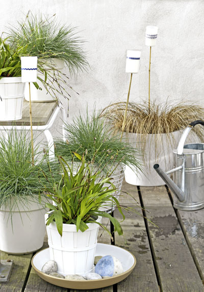 vakantiegevoel in eigen tuin, grassen in witte potten