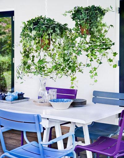 vakantiegevoel in eigen tuin, klimop-luchter