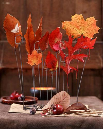 ideeën met herfstblad, in fotostandaards