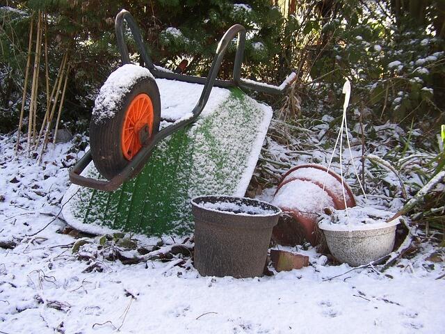 Sneeuwtuin hoekje
