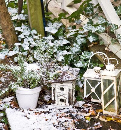 sneeuwtuin: stilleven met lantaarns