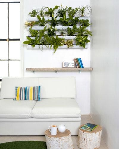 nieuw groen in huis: verticale tuin: kamerplanten-in-goot