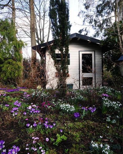 Voorjaarsbloeiers met op de achtergrond wit tuinhuisje