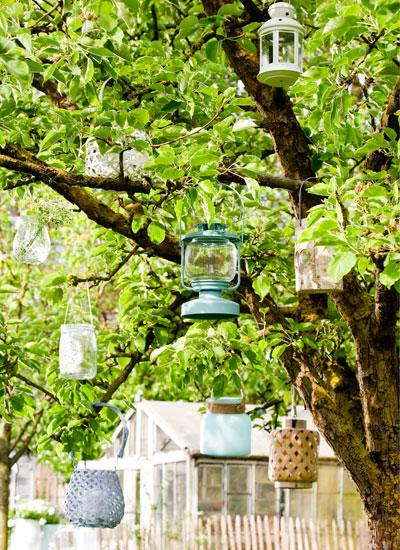update lenteterras, verzameling lantaarns in boom