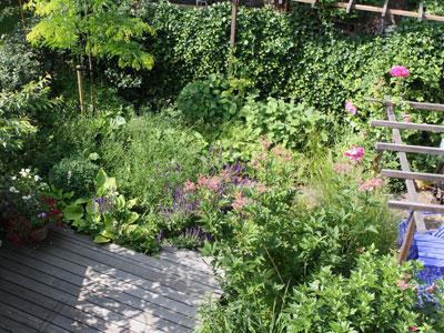 kleine-tuin-van-boven