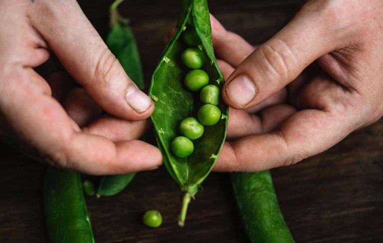 5xgroenten die het goed doen in pot