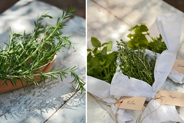 Zelf kruiden drogen home garden for Papieren broodzakjes