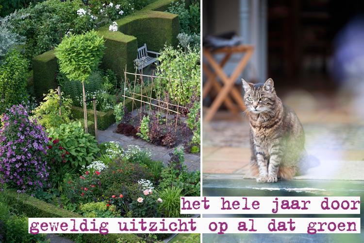 gezamenlijke tuin