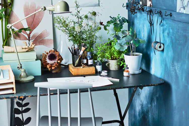 Voor botanisch tekenen heb je maar een klein hoekje nodig, en een bureau en stoel