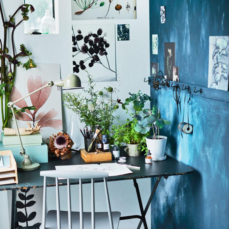 Botanisch tekenen: houd de herfsttuin vast