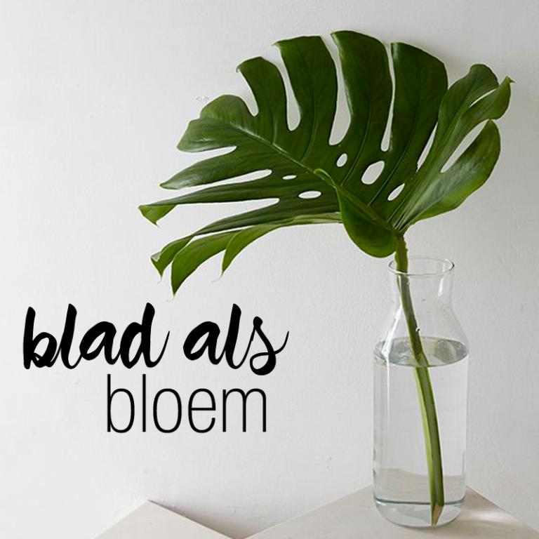 Trend: Blad als bloem