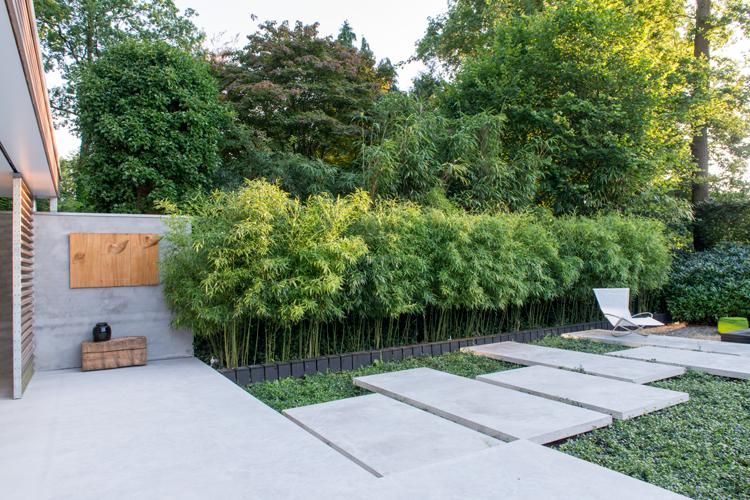 Kleine tuin in diepenveen for Tuinontwerp boek
