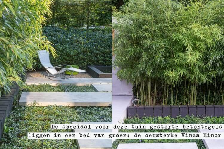 Kleine tuin Diepenveen