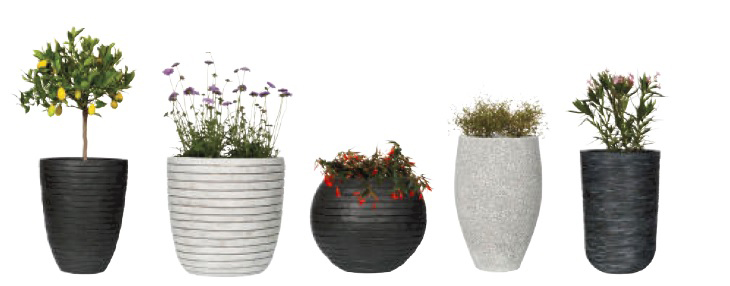 Plant & pot combinatie - Capi