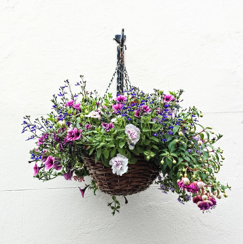 hangende tuin