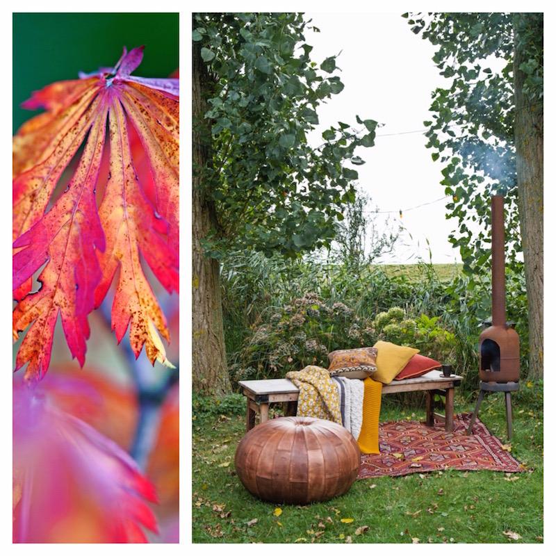 herfstpalet tapijt