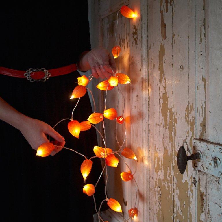 DIY: herfstslinger van lampionplant