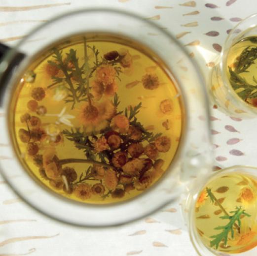 chrysanten thee