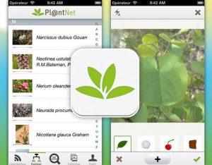PlantNet app scherm