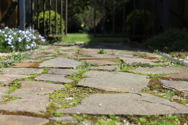 Terras of pad aanleggen