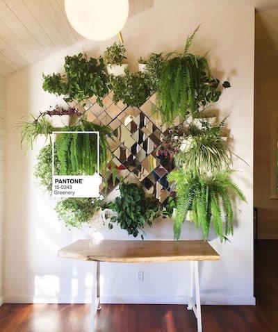 Greenery Pantone planten