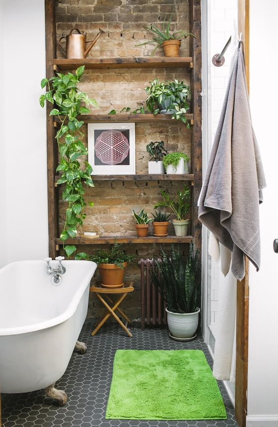 7x Planten Die Je (Donkere) Badkamer Overleven