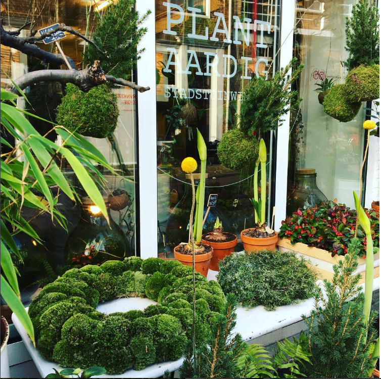 Groene Hotspot: Plantaardig (Middelburg)