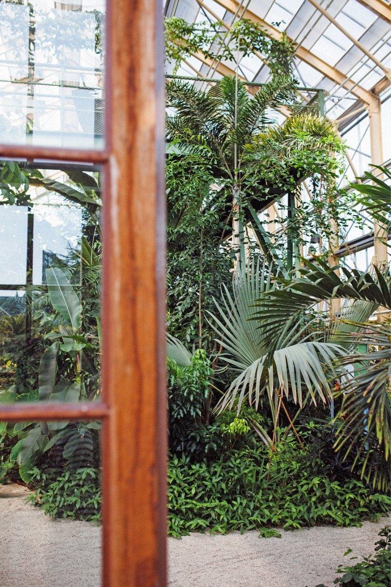 Hortus Botanicus Leiden: Eén Groot Groen Feest