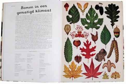 plantenboek