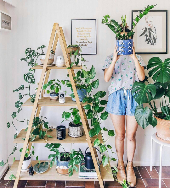5x Groene Instagram Accounts