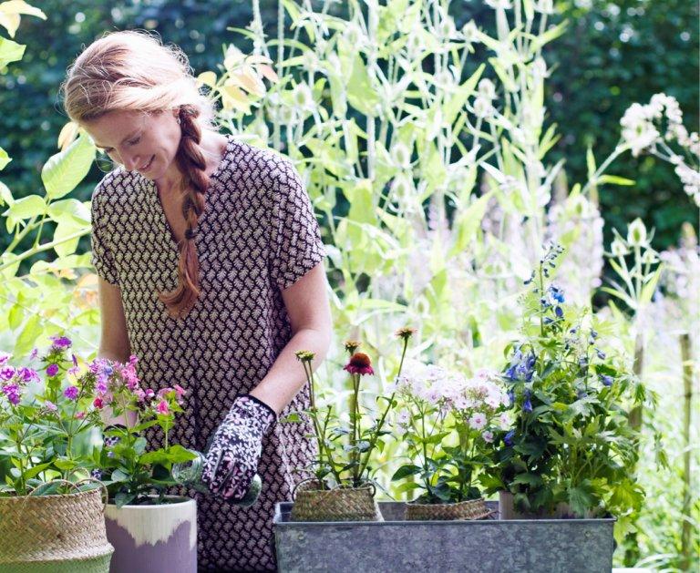 Alle tuinklussen die je moet doen in mei