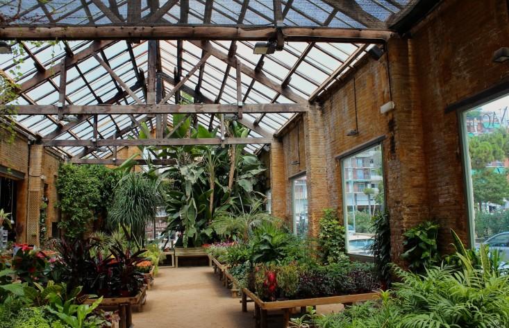 Hivernacle: De Beste Plantenwinkel Van Barcelona