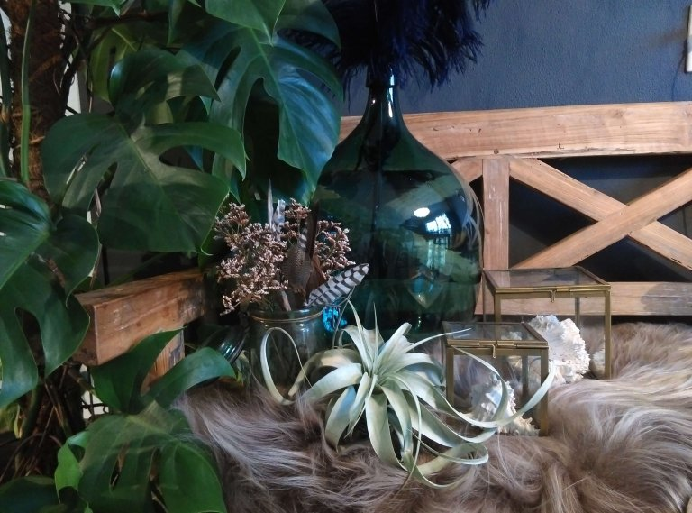 Botanische stijl voor je interieur
