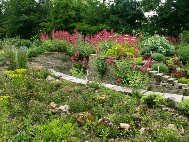 Hortus Alkmaar officieel lid van de Nederlandse Vereniging van Botanische Tuinen