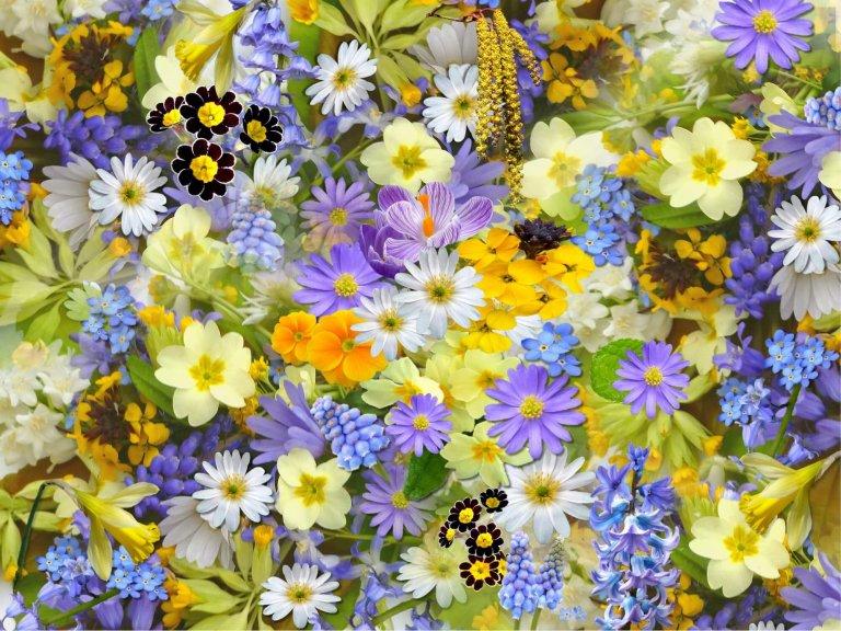 Flower Parade Rijnsburg bloemenspektakel met thema Beroepen